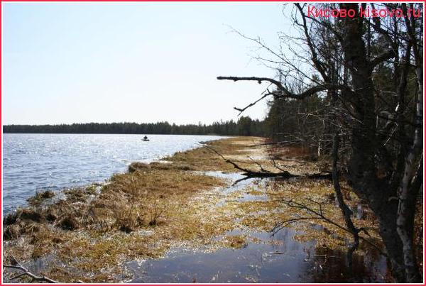 На Карповском озере