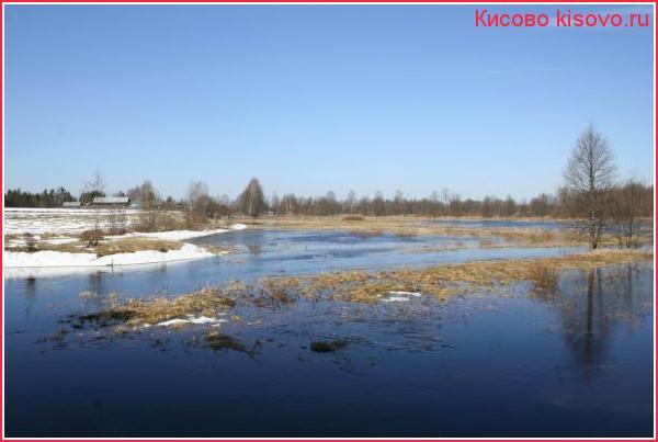 Разлив на Кисовке