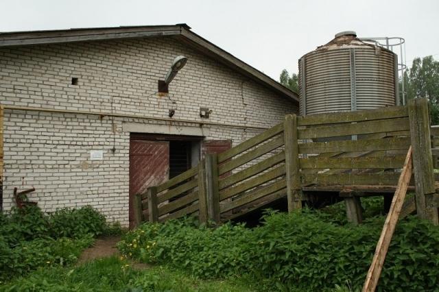 Свиноферму «Уломское» под Череповцом могут продать